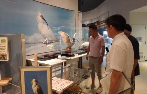 新潟県に生息する鳥について学ぶ