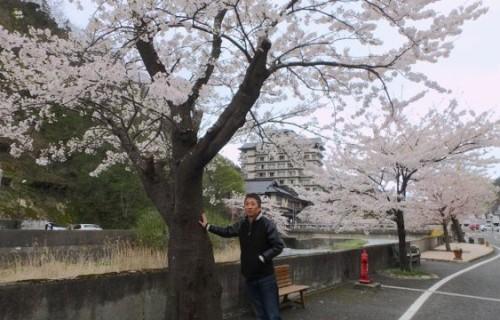 ヤン気ま的 春のお花見ドライブ 県外編その2