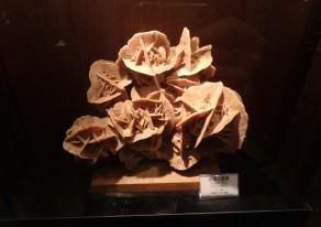 鉱物と粘土の不思議な世界
