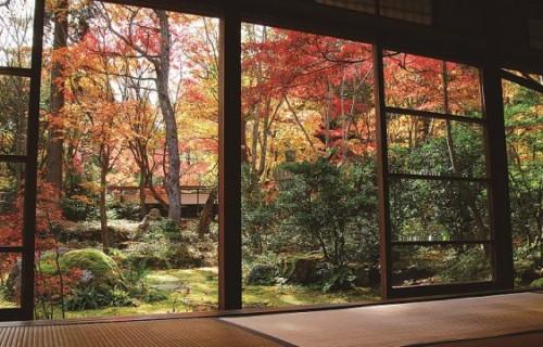 食と自然で楽しむ五泉市と秋葉区の秋!