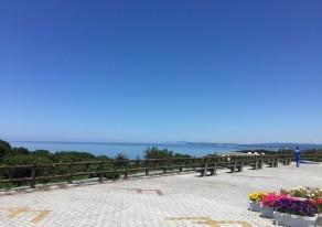 青い海、青い空、夏がやってきました~!