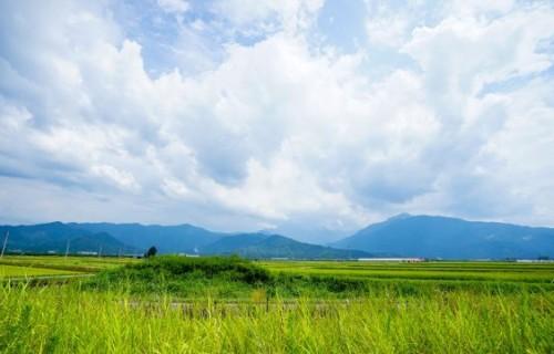 水の郷、魚沼に出来た糀甘酒工場「魚沼醸造」とイケビで感じる一服の涼。