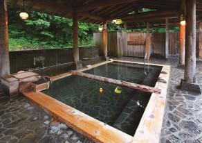 自然を求めて松之山へ!森林浴と極上温泉でリフレッシュ