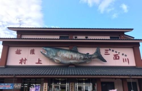城下町村上・三面川の鮭&酒めぐり