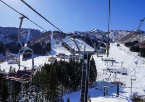 平日は毎日レディースデー♪女子雪旅は神立へGOGO。