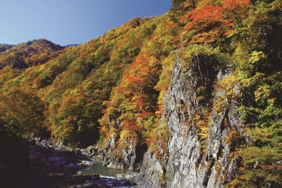 圧巻の紅葉とアート、美味で秋の休日を満喫する十日町への旅